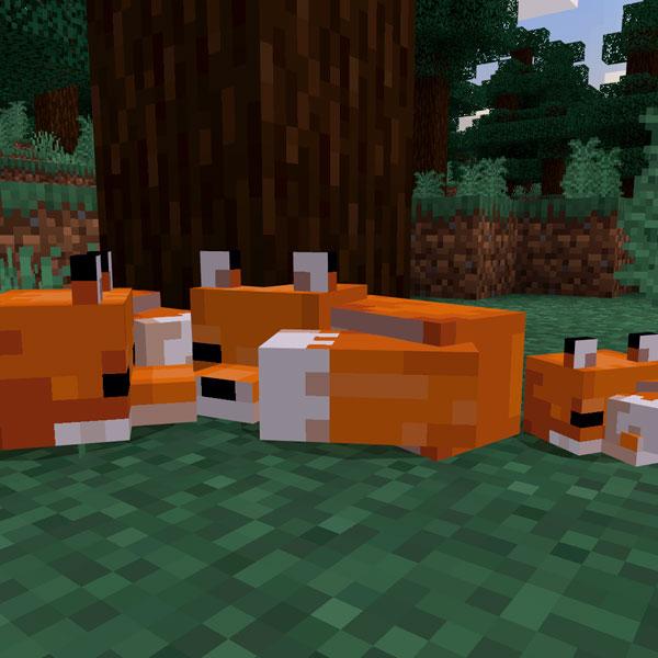 Juego Ps4 Minecraft Starter Colleccion